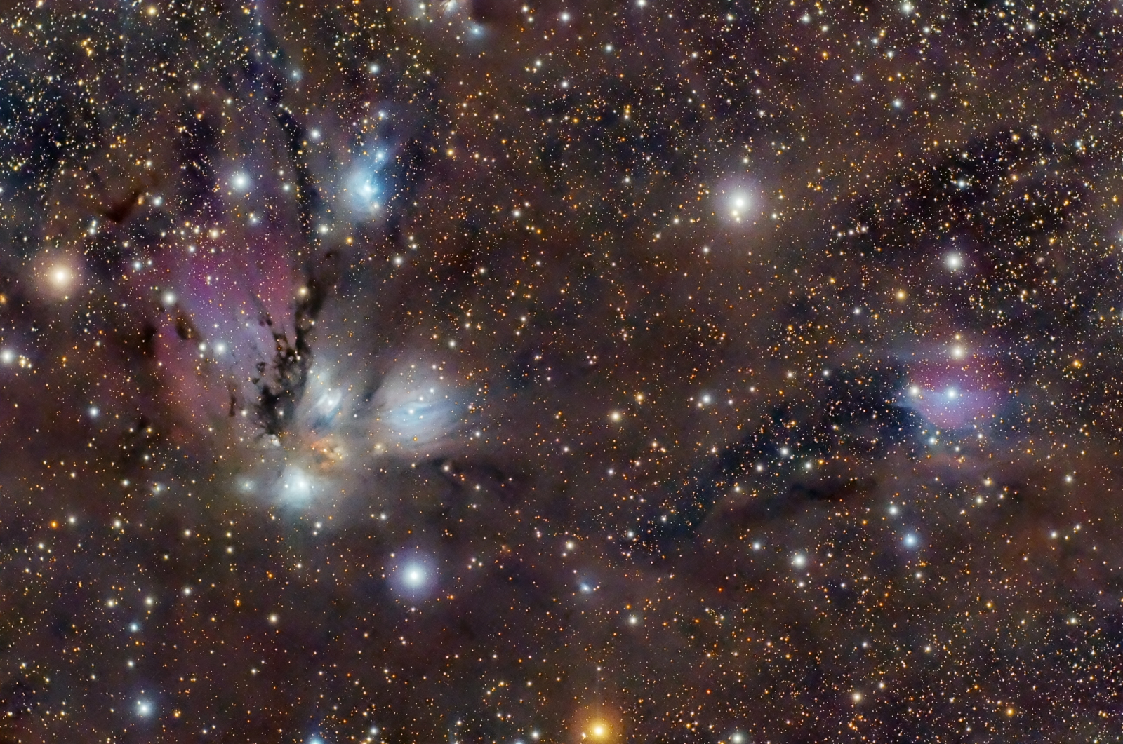 NGC2170 & Co - APOD 14-Jan-2013