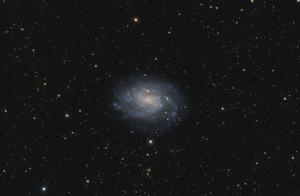 NGC 300, a galaxy in Sculptor