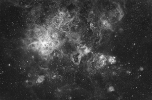 Tarantula Nebula in H-alpha light